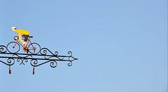 Le sprinter (Philippe Haumesser Photographies (+ 6000 000 view)) Tags: llva ciel sky cycliste turckheim alsace elsass france nikond7000 nikon d7000 reflex 2018 169 hautrhin