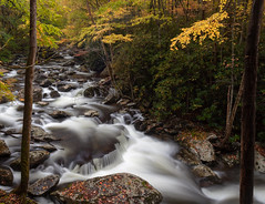 Autumnal Cascade (Tony Barber --The Jolly Swagman) Tags: gsmnp greatsmokymountains nationalpark tremont cascade tennessee mountains stream october fall leaves colorful institute smoky smokymountains smokies pretty nature classic green yellow wild explore explored canon eos 5dmkii