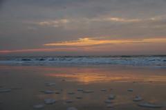 JLF16347 (jlfaurie) Tags: deauville normandie normandy france francia dqaniel mariefrance louisette mechas mpmdf jlfr jlfaurie pentax k5ii plage playa beach seaside mer mar sea