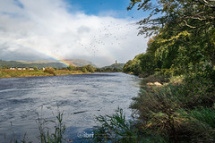 Storm Ali - 19 Sep 2018 - 79 (ibriphotos) Tags: weather stirling riverforth storm rainbow tree wallacemonument forthvalleycollege