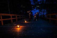 dark time walking adventure 2 (VisitLakeland) Tags: finland lakeland dark evening forest lamp lantern luonto lyhty lyhyty nature night nightdark outdoor portaat rappuset stairs yö