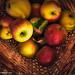 Les pommes de mon jardiner sont sans pesticides...._DSC4577_edit