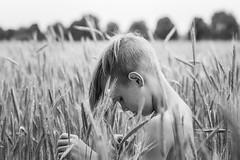 Im Kornfeld (NEVEZ P★) Tags: nevezphotography 50mm canon model dof berlin germany portrait fineart art childhood blackandwhite bnw bw sw bokeh light contrast eos nature summer people field feld focus