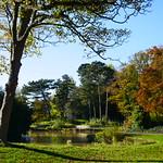 Autumn sunshine thumbnail