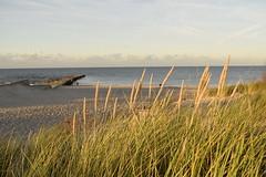 sunset time (navarrodave80) Tags: sunset goldenhour beach pier sand ustka poland westbeach nikond3300