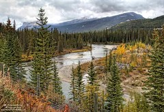 Bow River Overlook at Castle Junction in Banff National Park (PhotosToArtByMike) Tags: castlejunction bowriver banff banffnationalpark albertahighway1 canadianrockies albertacanada mountain mountains
