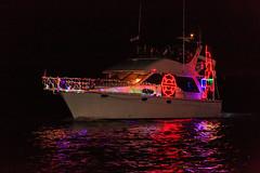 Freiheit FM-5483 (Christmas Ships Parade) Tags: 2017 christmasshipsparade columbiariver december holiday portlandoregon ships willametteriver boat captain captains lights tradition portland oregon usa