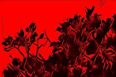 Composition (aRtphotojart) Tags: composition red art creative