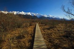 I could never resist the call of the trail... (Matt Champlin) Tags: friday weekend travel life glenorchy nz newzealand canon 2018 amazing fun boardwalk mountains winter buffalobill