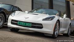 White Corvette C7 Convertible #1 :: HDR (servalpe) Tags: chevroletcorvette supercars hdr canon colorefex marbella convertible 5dmarkiii chevroletcorvettec7convertible puertobanús canoneos5dmarkiii chevrolet 2470 ef2470mmf4lisusm cars automotion car corvette banus servalpe andalucía spain es
