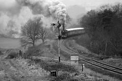 SVR 72578bw (kgvuk) Tags: svr severnvalleyrailway train railway heritage preservation safaricurve locomotive steamlocomotive steamtrain steamengine 8572 460 lner b12