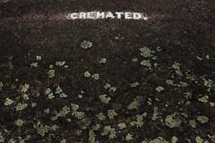 Full Stop (pni) Tags: grave text surface type cremated fullstop brompton cemetery uk18 london uk england unitedkingdom pekkanikrus skrubu pni