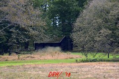 XXX_DSC0004 (irishguards) Tags: new colour color valley forge penssylvania hisotry history georgewashington bright travel george washington