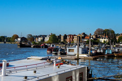 View along the Thames by Hammersmith (LucaOc87) Tags: london thames river hammersmith uk boardwalk water boats clearing clearsky birds sky sunnyday nikon nikonphotography nikond3100