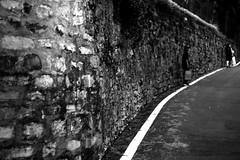 Don't look back in anger (Leica M6) (stefankamert) Tags: stefankamert walktheline line wall people tones textures film analog grain blur leica m6 leicam6 summicron dr dualrange kodak trix noir noiretblanc bellagio italy
