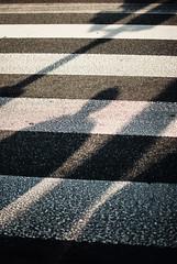 Love of Shadows (ewitsoe) Tags: 35mm city europe ewitsoe nikond80 street warszawa erikwitsoe poland summer urban warsaw shadows shaodw crosswalk people shade life streetscene blog blogger