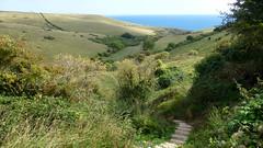 Purbecks, Dorset, UK (east med wanderer) Tags: england dorset uk worthmatravers seacombequarry coast track walking purbecks sea