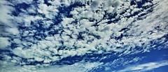 20180923_DP0Q4581-21x9 (NAMARA EXPRESS) Tags: landscape nature sky cloud 219 daytime autumn fall fine outdoor color toyonaka osaka japan spp spp661 foveon x3 sigma dp0 quattro wide ultrawide superwide namaraexp