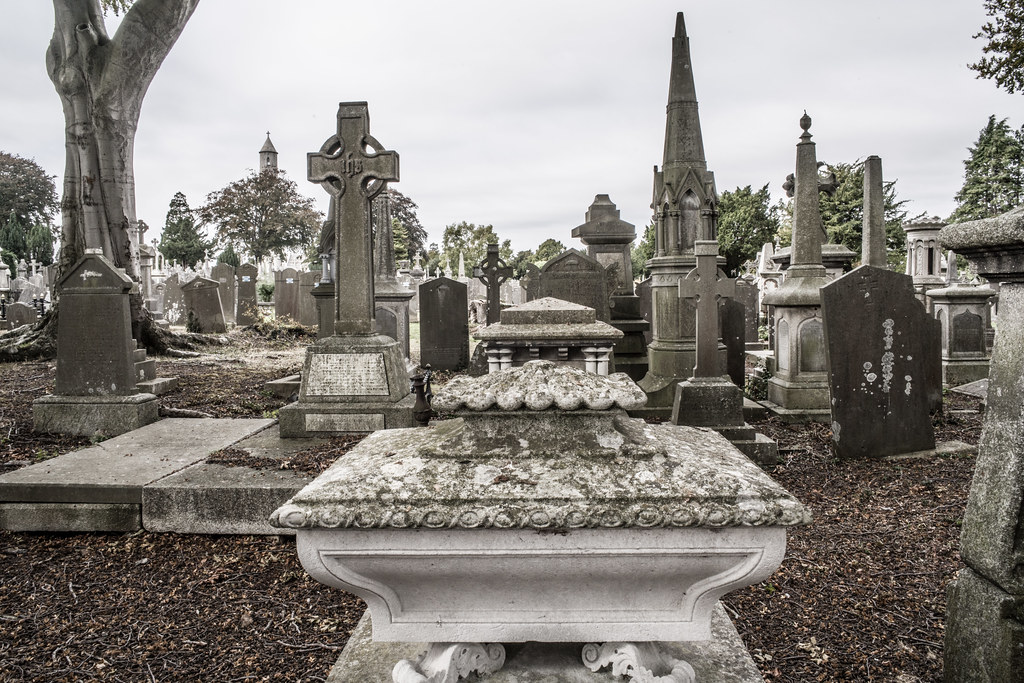 SEPTEMBER 2018 VISIT TO GLASNEVIN CEMETERY [ I USED A BATIS 25mm LENS AND I EXPERIMENTED WITH CAPTURE ONE]-144826