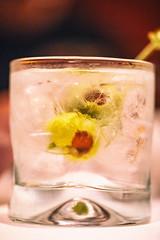 Bombay Saphire Martini, Fleming's Prime Steakhouse & Wine Bar, Walnut Creek, California (Thomas Hawk) Tags: america bayarea bombaysaphiremartini california eastbay flemingsprimesteakhousewinebar flemingssteakhouse flemings sfbayarea us usa unitedstates unitedstatesofamerica walnutcreek westcoast cocktail foodporn martini restaurant steakhouse fav10 fav25 fav50