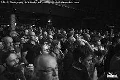 2018 Bosuil-Het publiek bij DVL en Beaux Gris Gris 5-ZW