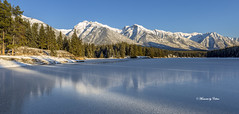 Johnson Lake Freeze (Canon Queen Rocks (2,342,500 + views)) Tags: ice frozen freeze johnsonlake landscape lake landscapes lakes landschaft mountains mountain reflections rockies trees tree icelands sky scenery scenic snow white bluesky blues banffnationalpark canada alberta