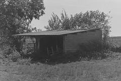 abandoned 2 (Lennart Arendes) Tags: tree gras field farm white black bw abandoned shed 50mm rodinal kb 35mm 400 analog trix kodak