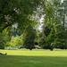La sieste à l'ombre de l'arbre - Parc de la Beaujoire (Nantes)