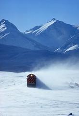 Snow tiger (Moffat Road) Tags: burlingtonnorthern bn tiger tigerstripe emd gp50 3140 winter glaciernationalpark eastglacier montana hiline train locomotive railroad mt blowingsnow grizzly