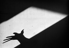 5 (RoryO'Bryen) Tags: hand shadow shadows blackandwhite noiretblanc blancoynegro roryobryen copyrightroryobryen rangefinder film analogue analoguephotography 35mm summicron leicam3 light dark
