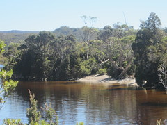 IMG_3805 (shearwater41) Tags: australia tasmania cradlemountain dovelake lake