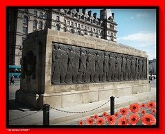 "FORGET YOUR MOBILE PHONES, FORGET THE TV SOAPS,FORGET THE SAD POLITICIANS TRYING TO CURRY FAVOUR "" TIME TO GET YOUR MIND FOCUSED "". (liverpoolmeerkat has returned.) Tags: memorial poppies remembrance sunday liverpool"