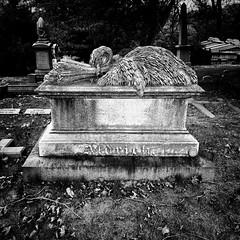 Green-Wood Cemetery (AMRosario) Tags: iphone greenwood sculpture iphonexsmax blackandwhite newyorkcity bw cemetery kensington brooklyn