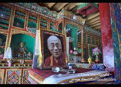 Dalai Lama photo inside the Diskit Monastery, Nubra Valley, Ladakh, India (jitenshaman) Tags: travel worldtravel destination destinations asia asian india indian ladakh ladakhi leh tourism tibetan tibetanbuddhism buddhist buddhism diskit deskit diskitgompa deskitgompa monastery gompa monastic monk monks nubra nubravalley gelugpa order sect interior dalailama hisholinessthedalailama hisholiness 14thdalailama photograph portrait photo leader lama spiritual faith following disciple guru