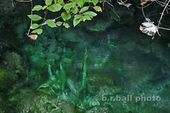 BRB_3128cesn c (b.r.ball) Tags: brball banff banffnationalpark alberta canada mountains caveandbasinnationalhistoricsite hotsprings
