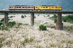 西風的話 ([M!chael]) Tags: nikon f3hp nikkor 10525 ais fujifilm superia200 train taiwan hsinchu manual film