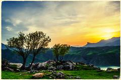 💛❤💚 - K U R D I S T A N (Kurdistan Photo كوردستان) Tags: کوردستانی کورد kurdistan کوردستان land democratic party koerdistan kurdistani kurdistán kurdistanê zagros zoregva zazaki zaxo zindî azadî azmar xebat xaneqînê christianity cegerxwin van love mahabad music arbil democracy freedom genocide herêmakurdistanê hawler hewler hewlêr halabja herêma judaism jerusalem kurdistan4all lalish qamishli qamislo qamishlî qasimlo war erbil efrînê refugee revolution rojava referendum yezidism yazidis yârsânism unhcr peshmerga peshmerge grass tree landscape field sky water river animal mountain rock mi