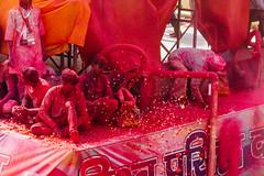 Blowing Pink Gulal And Flowers over Shri Dauji Temple, Chhabria (AdamCohn) Tags: 017kmtobaldevinuttarpradeshindia abeer adamcohn baldev chhabria india shridaujitemple uttarpradesh colors geo:lat=27408404 geo:lon=77822050 geotagged gulal holi play wwwadamcohncom अबीर गुलाल baldeo