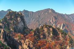Top of Mt. Seolark 2 (Tachial) Tags: fe carlzeiss se 소니 55mm sony sel55f18z seolark fullframe lce7rm3 korea a7r3 mountain 속초시 강원도 대한민국 kr