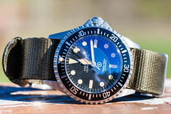 Steinhart OVM on Barton army green Jetson strap (hz536n/George Thomas) Tags: steinhart ovm 2018 canon5d canon ef100mmf28lmacroisusm fall michigan prescott upnorth barton jetson nato copyright cs6 nik watch ef100mmf28lmacrois ogemawcounty