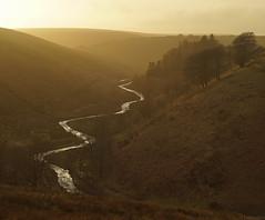 River  Barle Winter (EmPhoto.) Tags: exmoor uk landscapepassion emmiejgee riverbarle barlevalley goldenhour sonya7r sonyzeiss2470mm