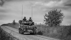 just the usual traffic (Redheadwondering) Tags: sonyα7ii salisburyplain wiltshire sonyf1450mmlens scimitar military militaryvehicles vehicle track byway trackedvehicle blackwhite bw army britisharmy