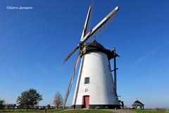 Molen Ter Hengst (Fabke.be) Tags: vlaamseardennen ronse oostvlaanderen vlaams belgië flandres flanders molen molentenhengst windmill windmolen moulin monument 2018 canon canon175528 canon7dmkii erfgoed