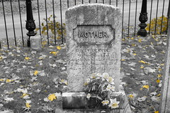 flowers and leaves (bndocksaints_kenny) Tags: flower leaves cemetery graveyard october leaf ma stone mother hingham photography a