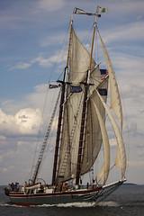 Lewis R French (vcrimson) Tags: sailmainecoastcontest2018 sailmainecoast contest 2018