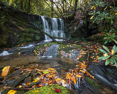 Gibson Creek waterfall 10-27-2018 (adamwilliams4405) Tags: nc waterfall longexpo fall leaves water creek hike woods forest explore outside outdoors canon landscapes fallcolors green yellow northcarolina nctourism nature mountains wild tones trees colors