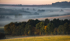 soft sunrise ~~~ (Wöwwesch) Tags: sunrise foggy soft pastures trees hills rural warm overtheexcellence flickrsbest
