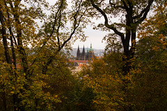 St. Vitus Cathedral, Prague (romanboed) Tags: leica m 240 summilux 50 czech europe cesko czechia prague praha prag praag praga city fall autumn travel tourism 布拉格 прага プラハ براغ 프라하 st vitus cathedral katedrala sv vita
