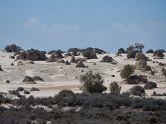 Mounds on Sand Dunes (mikecogh) Tags: lakemungo dunes sand mounds ancient saltbush
