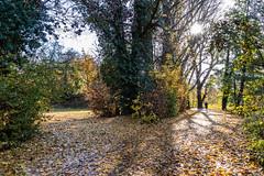Herbst an der Alb - 3 (Heiko S.) Tags: karlsruhe badenwürttemberg deutschland de herbst alb albtal canon